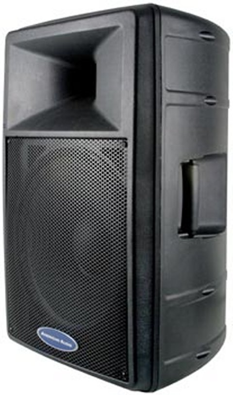 DLS-15�American Audio DLS-15 2-Way 15-Inch Speaker